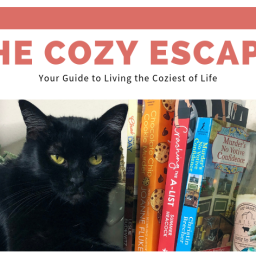 July Newsletter| Cozy Writing?!